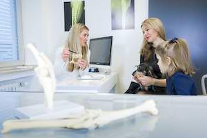 Tierarzt Besserer · Gespräch