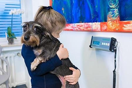Tierarztpraxis Besserer: Wiegen bei der Aufnahme des Tieres
