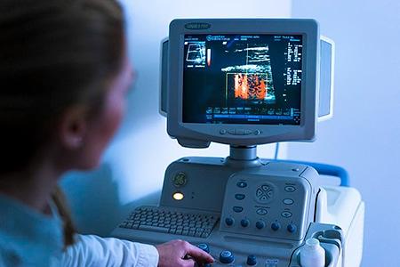 Tierarztpraxis Besserer: Dr. med. vet Katerine Besserer bei der Ultraschalluntersuchung