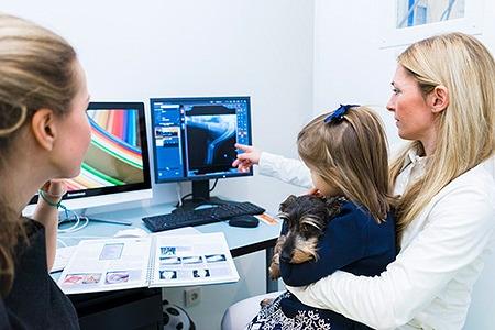 TierarztprTierarztpraxis Besserer: Besprechung nach Untersuchung eines Hundes im Behandlungsraumxis Besserer: Untersuchung eines Hundes im Behandlungsraum