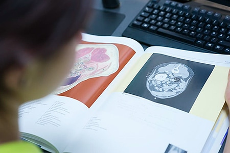 Tierarztpraxis Besserer: CT-Befundung mit Hilfe von Fachliteratur