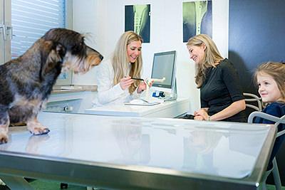 Tierarztpraxis Besserer: Dr. med. vet. Katerine Besserer bei einer Besprechung mit einer Hundebesitzerin