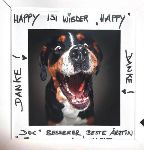"""Tierarzt Besserer: Kundenstimmen """"Happy"""""""